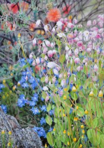 """""""Spring Song"""" coloured pencil drawing, 2012."""