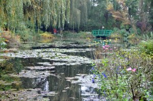 Willows, lilies and bridge.