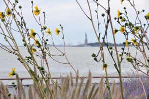 Liberty Island as seen through Battery Park weeds.