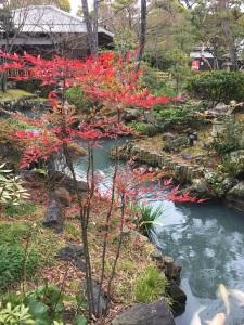 A garden next to Kurashiki Kokusai Hotel.