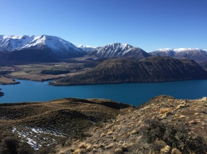 Matt and I pushed ourselves on a big walk up Peak Hill. Gosh it was hard work but worth it for the views. Here is Lake Coleridge.