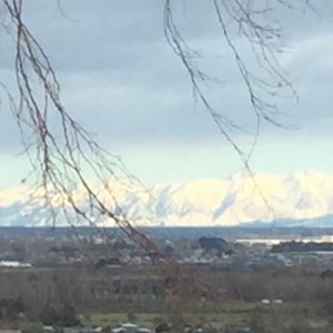 View from our apartment in Christchurch. Fresh snow on the Southern Alps.