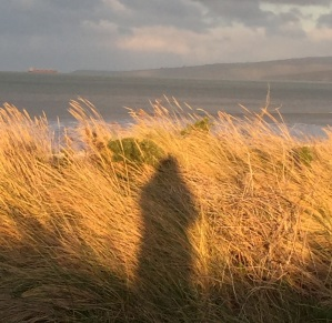A selfie of my shadow in the grasses of New Brighton. (Don't I look nice!?)