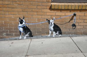 "Street art dogs. Is this what the sign ""curb your dog"" means?"