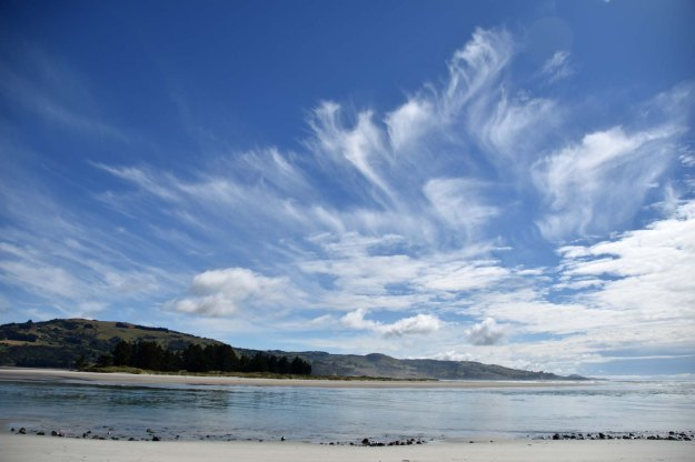 A return to the coast. This is Blueskin Bay; an estuary 25 kms north of Dunedin.