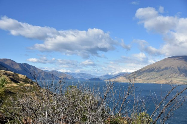 Just over a hill from Lake Hawea is Lake Wanaka.